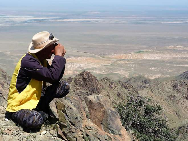 Local community member monitoring in the Gobi Desert