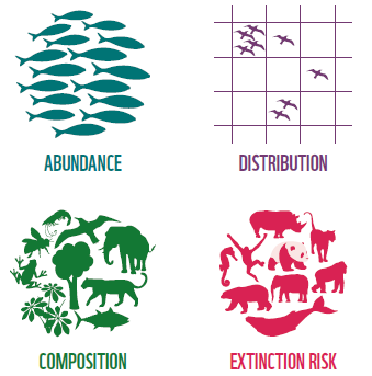 Illustration - Abundance, Distribution, Composition, Extinction Risk