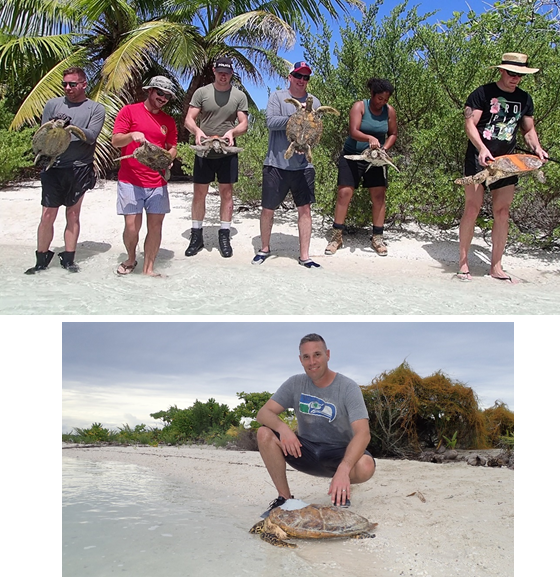 2018 Nov. Releasing tagged turtles. Turtle Cove, Diego Garcia, BIOT