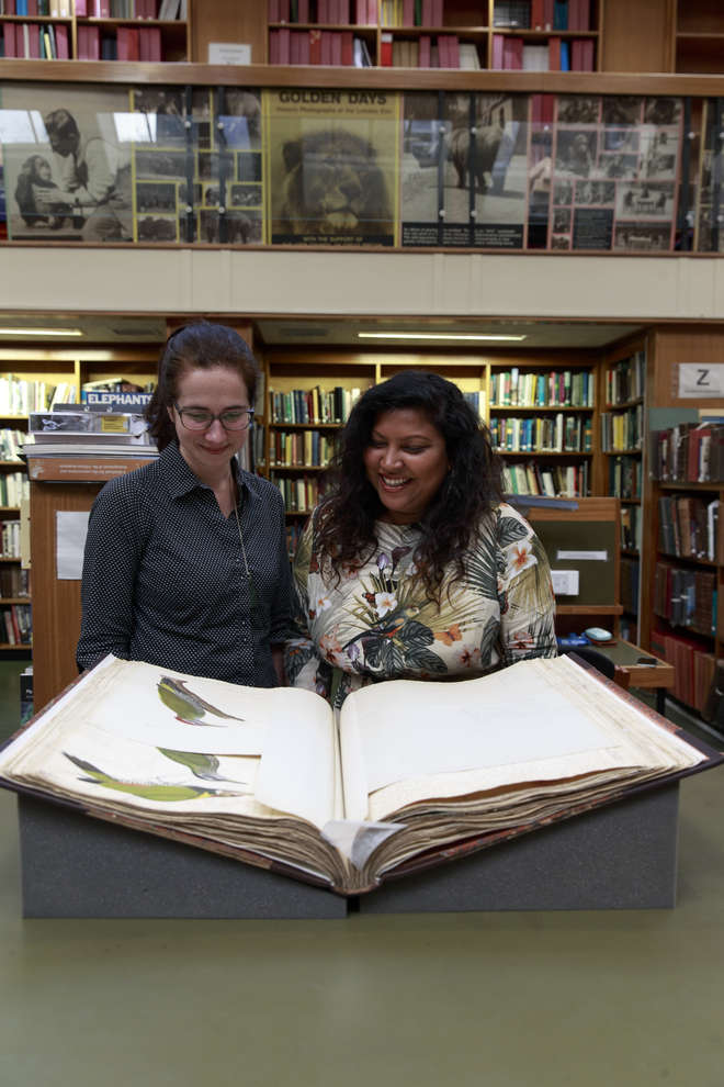 Two Library visitors viewing manuscripts and drawings depicting birds