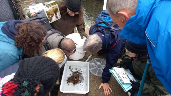 Photo of volunteers gathered round a sample tray on the riverbank