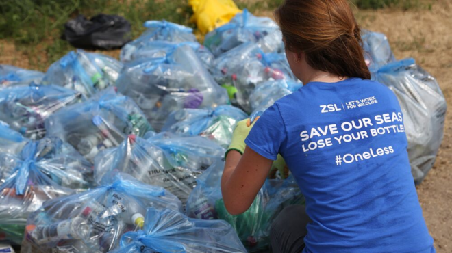 Person collecting bottles during a beach clean