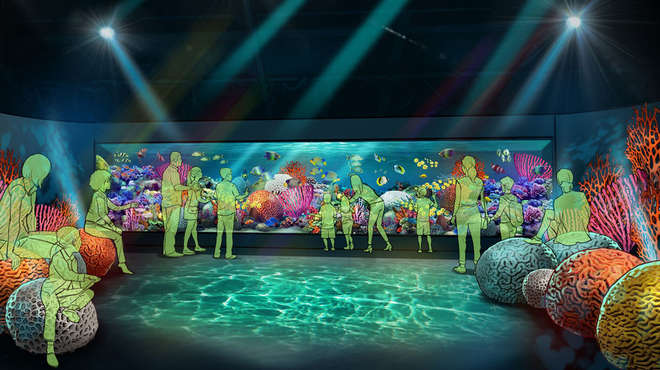 An artist's impression of a new coral exhibit at ZSL London Zoo
