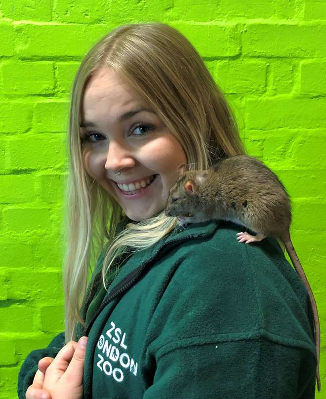 Photo - Portrait shot of Heather with a rat sat on her shoulder