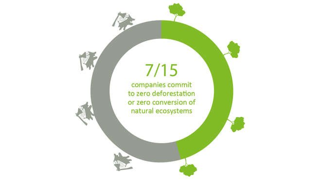 Info graphic - 7/15 companies commit to zero deforestation or zero conversion of natural ecosystems.