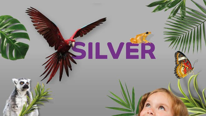 Silver word on grey background with animals