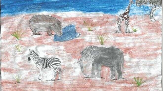 Drawing of elephant, hippo, giraffe and Zebra