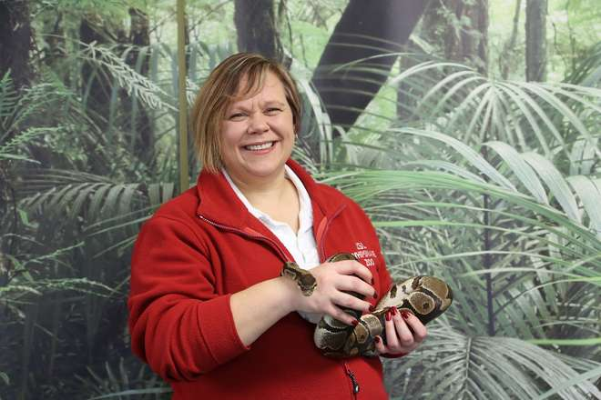 Volunteer Carole holding one of our snakes used in education sessions