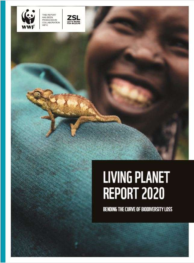 Living Planet Report Cover image 2020